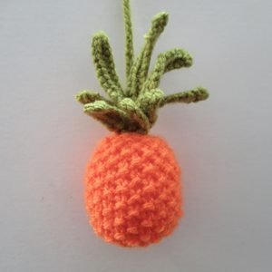 Little_Pineapple_IMG_8069_small2